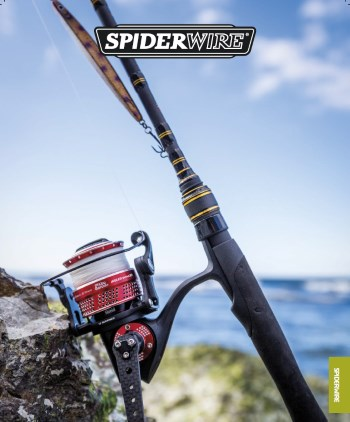 Katalog SpiderWire  - 2020